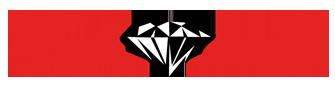 Goudservice Logo